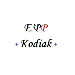 E'PP Kodiak cal.50 ''12cartons de 4000b''